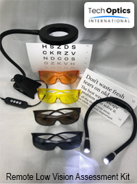 Remote Low Vision Assessment Kit